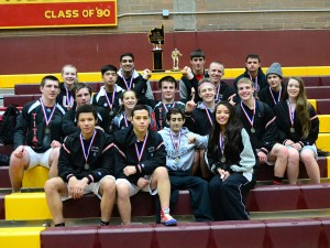 clark-county-2015-placers